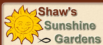SHAW'S SUNSHINE GARDENS... the daylilies of Charlie Shaw